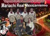 Mariachis bogotá precios. asombre con una serenata a su ser amado.