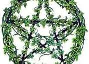Curso de magia verde
