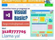 Profesor de visual basic