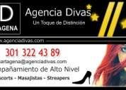 Agencia divas busca escorts - alto nivel - en cartagena por apertura de nueva agencia de alto nivel