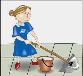 Señora responsable y cumplidora para aseo en casas o oficinas