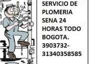 Plomeros tÉcnicos del sena.rapidez.profesionalismo y honestidad. 3134035858,