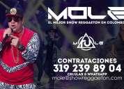 Show de reggaeton en bogota mole a otro nivel