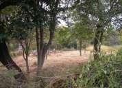 270 hectareas planas piedecuesta