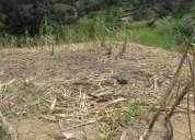 Lindo lote en cisneros  antioquia