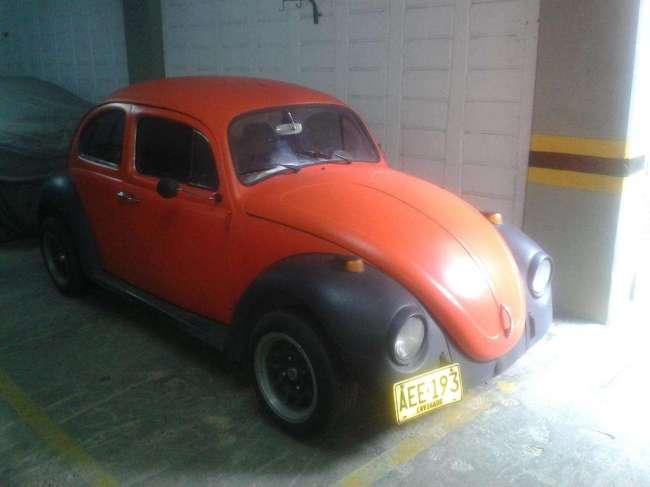 Excelente escarabajo