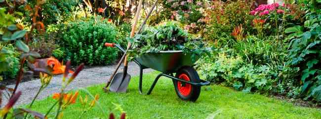 servicio tecnico de jardineria