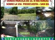 Vendo terreno de 13.9 hectÁreas por la vÍa piedecuesta san gil