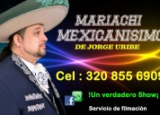 Mariachi mexicanisimo  pereira
