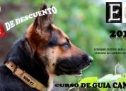 adiestramiento canino certificado y avalado