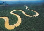 Vive la verdadera naturaleza en amazonas