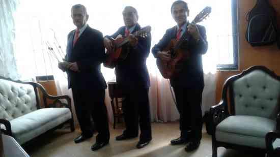 SERENATA DIA DEL PADRE, TRIO FASCINACION, MUSICA DE CUERDA PARA PAPA