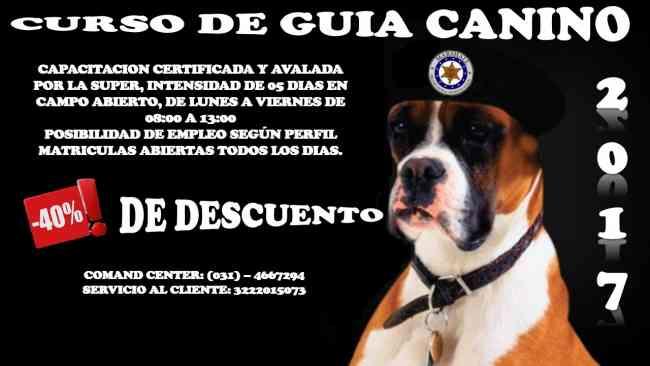 CURSOS DE SEGURIDAD PRIVADA