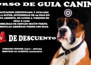 Curso en seguridad en guia canino