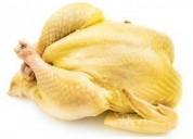 Venta de pollo campesino (amarillo) al por mayor y viceras