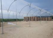 Construccion invernaderos obras civiles y cultivos