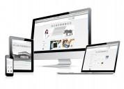 Paginas web para su empresa o negocio, calidad y buen servicio.