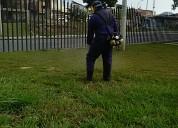 Arreglo de jardines aseo general