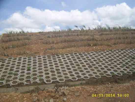 estabilizacion taludes - sistema bioingenieria vetiver - consultoria colombia