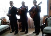 Trio musical fascinacion, serenatas bogota, tangos, pasillos, boleros y mas