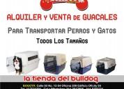 Alquiler y venta de guacales para perros