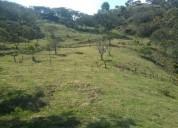 Finca ganadera 21 hectareas