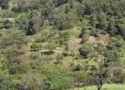 Finca 3 hectareas solo potreros