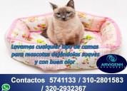 Lavado de camas para mascotas