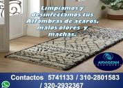 Lavado y desinfecciÓn de alfombras