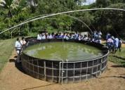Asesoria en proyectos piscicolas