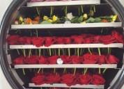 Flores naturales preservadas,originales