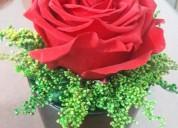 Arreglos florales  preservados