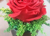Arreglos florales preservados,nuevos estilos