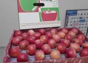 Frutas desde chile de exportacion