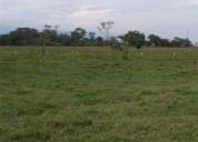 Venpermuto dos 2 hectareas en acacias en acacías