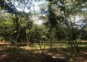 Lote acacias meta vereda dinamarca en acacías