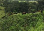 VENTA HOTEL CERCA SANANDRESITO LA ISLA OPORTUNIDAD en Bucaramanga