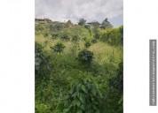 Venta lote en la vereda guayabal pereira 1500 m2
