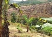 Vendo o permuto excelente finca de 4 hectareas