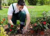 Solicito jardineros.