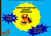 Promoción del día: control de plagas
