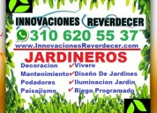 ⭐ vivero medellin, grama, pasto, plantas, arboles,