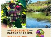 ¡ven a disfrutar en familia del parque de la uva!