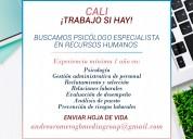 Buscamos psicÓlogo especialista en recursos humano