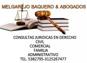abogados: asesores juridicos