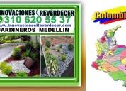 ⭐ innovaciones reverdecer medellin, jardinero, viv