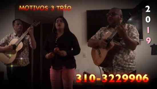 TRIO MUSICAL MOTIVOS 3 TRIO