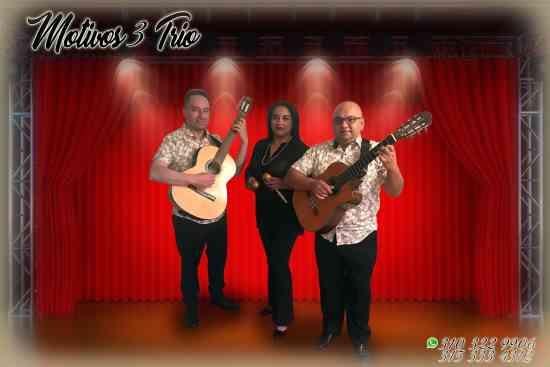 SERENATAS EN BOGOTA TRIO MUSICAL