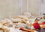 Servicio de quitar papel colgante, papel mural,