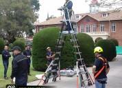Escalera 2.60 ecolift segura trabajo en alturas